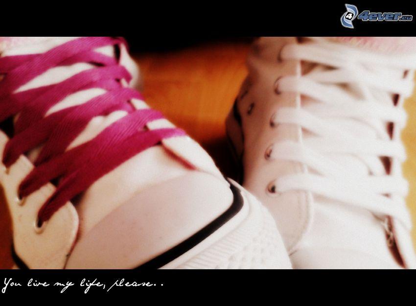 zapatos deportivos, vida, cordones