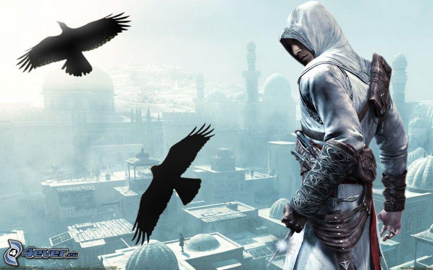 Assassin's Creed, corneja