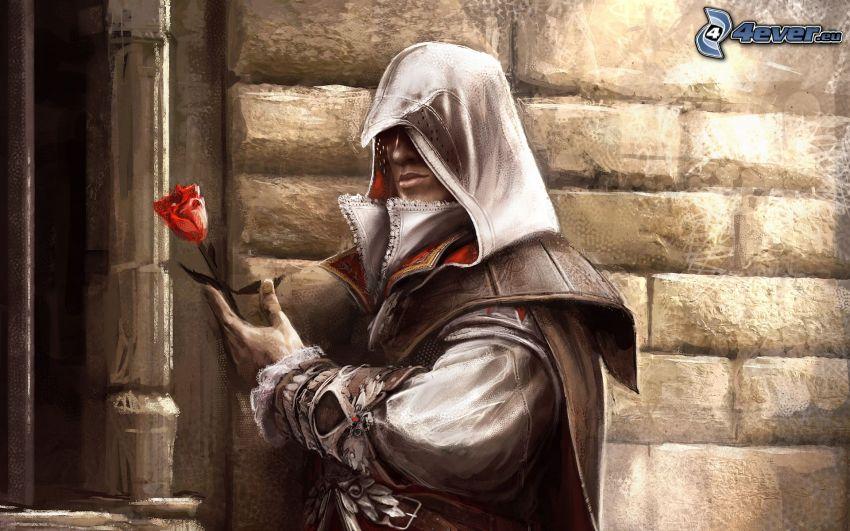 Assassin's Creed, rosa