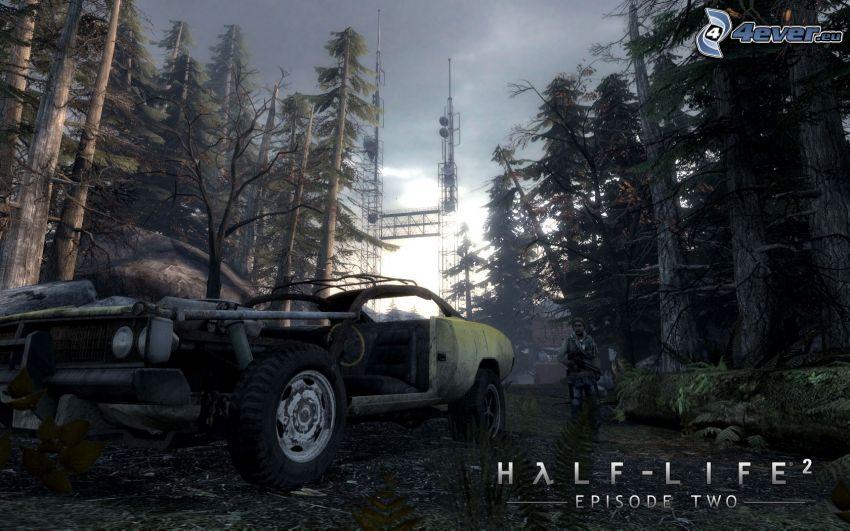 Half-Life 2, bosque