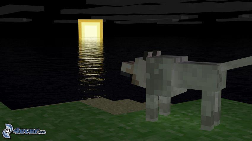 Minecraft, puesta del sol, lobo