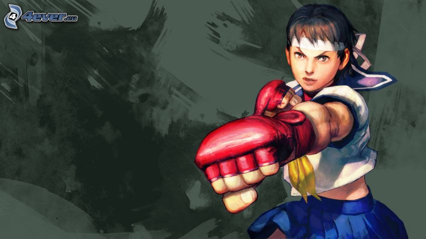 Street fighter, guerrera