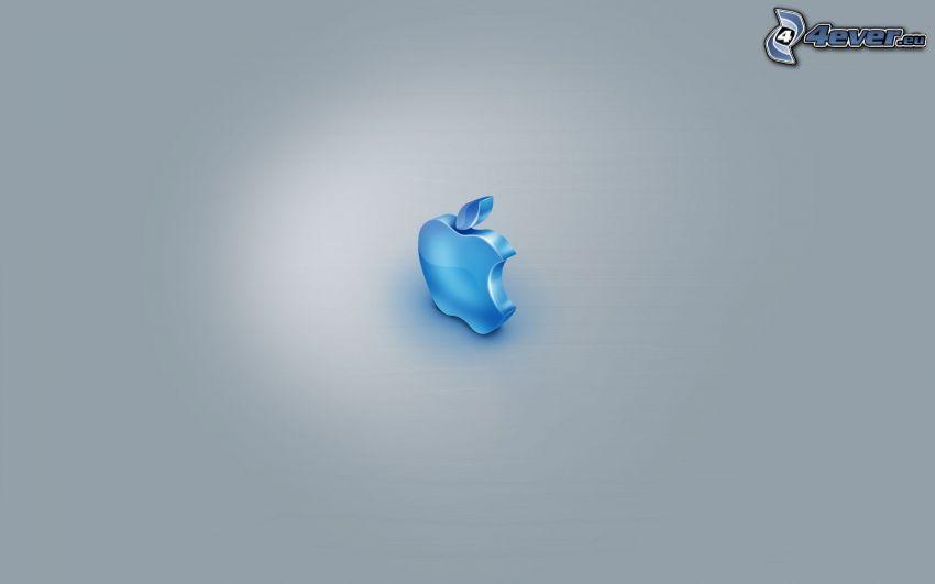 Apple, fondo gris