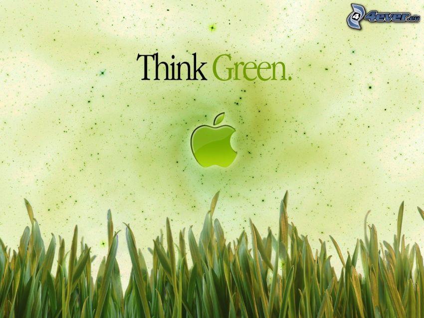 Think Green, Apple, hierba
