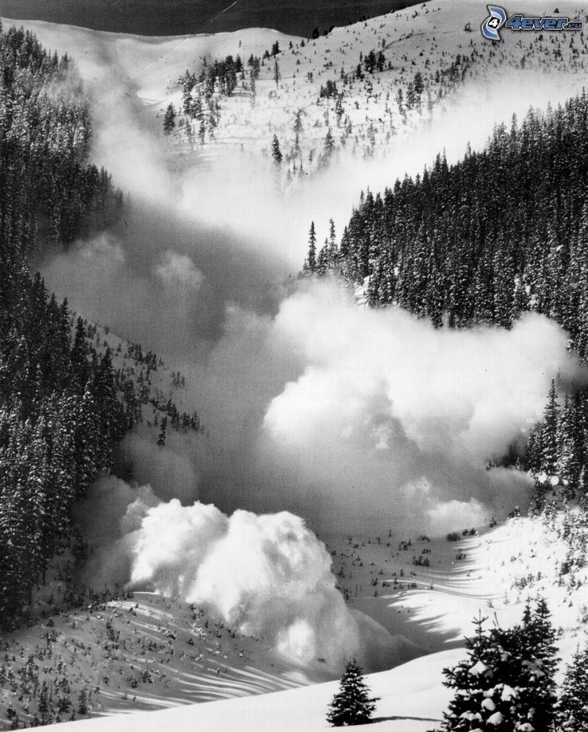 alud, paisaje nevado