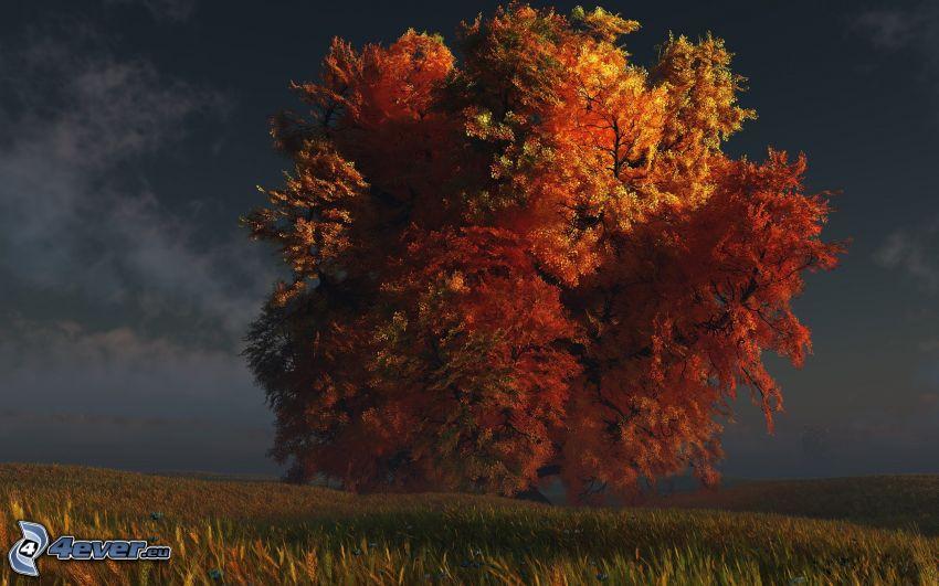 árbol otoñal, árbol ramificado