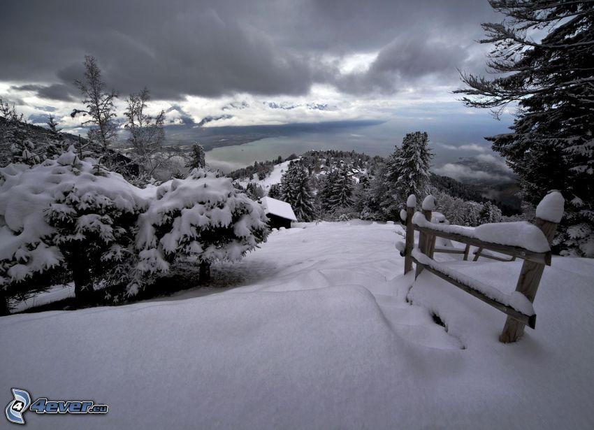 árboles nevados, cerco de madera