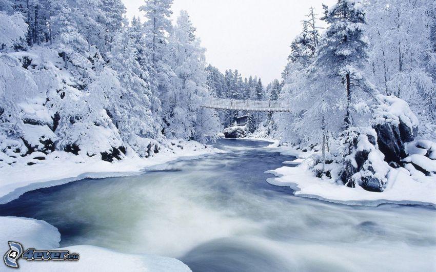 árboles nevados, río, puente