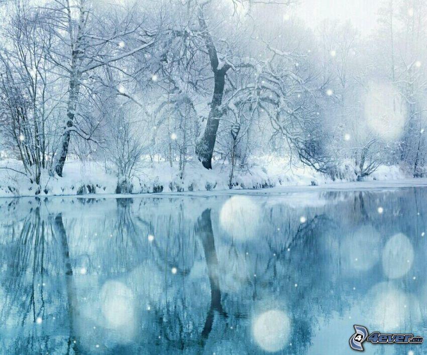 árboles nevados, río