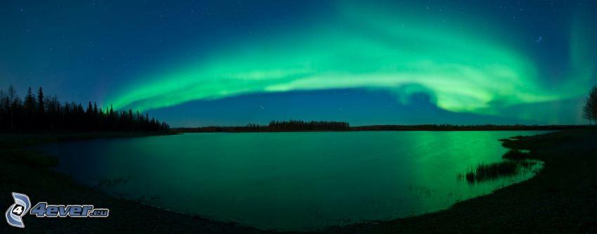 aurora polar, lago, panorama