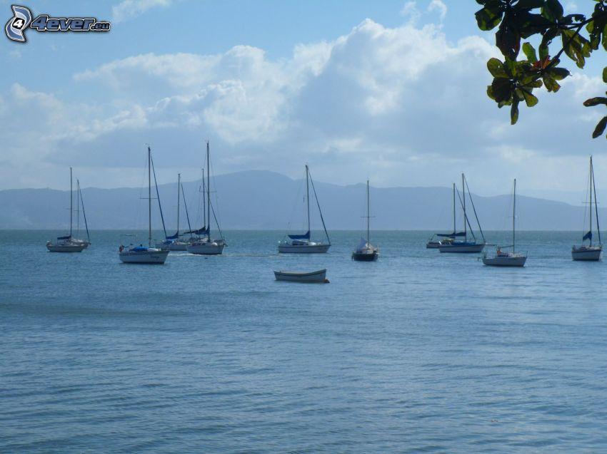 barcos en el lago, naves