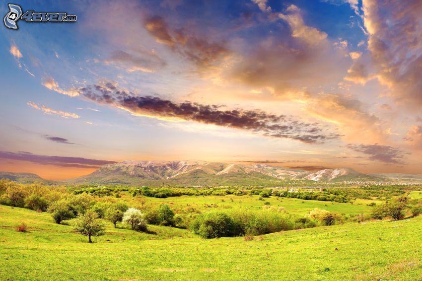 bosques y praderas, sierra, cielo, montañas en forma de mesa