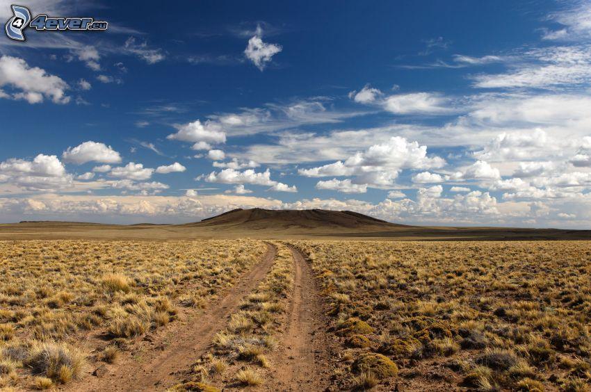 camino de campo, campo, nubes