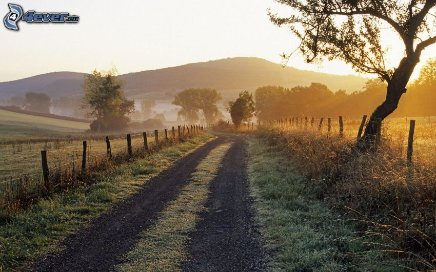 camino de campo, puesta de sol sobre el campo, cerco de madera, sierra, árboles