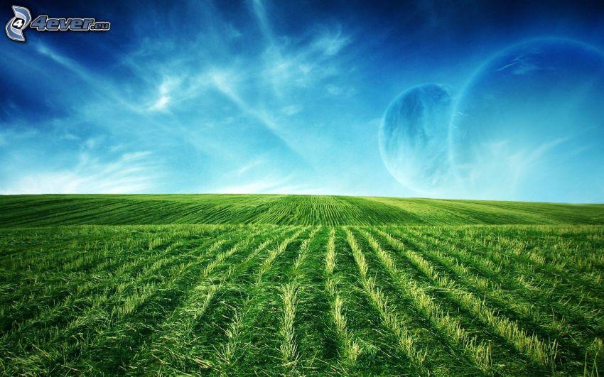 campo, cielo, planetas