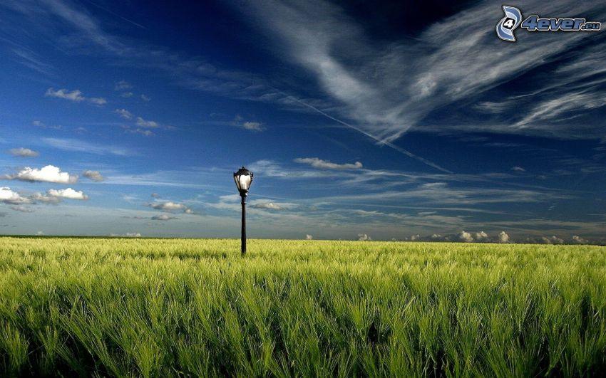 campo, lámpara de calle, cielo, HDR