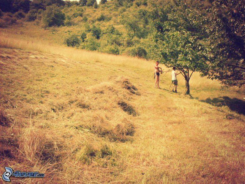 campo, prado, hierba seca, heno, árboles, personas