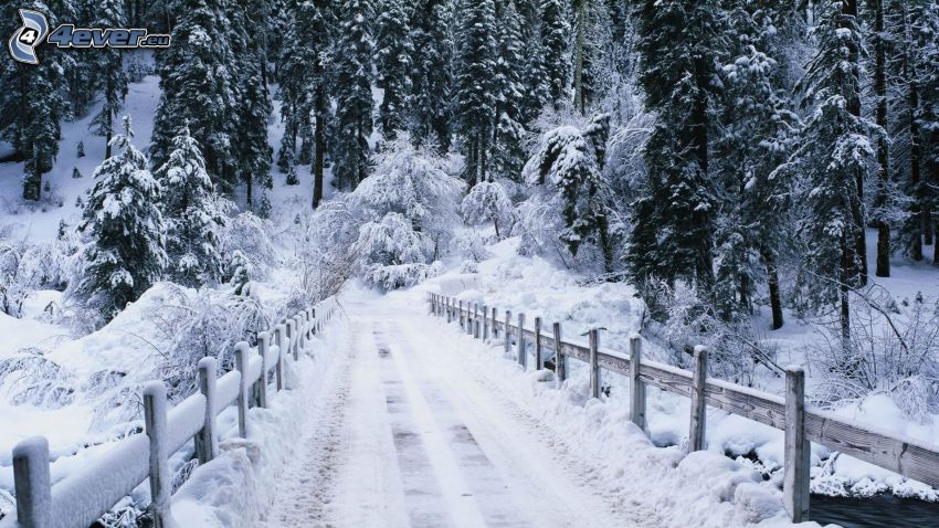 carretera de invierno, paisaje nevado, puente, cerco de madera