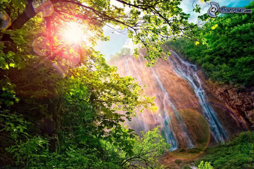 cascada, roca, sol, verde