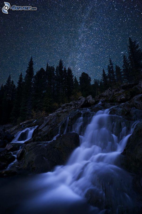 cascada, rocas, noche, cielo estrellado, árboles coníferos