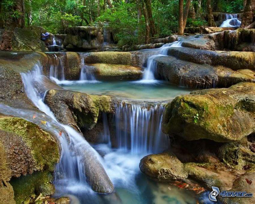 cascadas, corriente que pasa por un bosque
