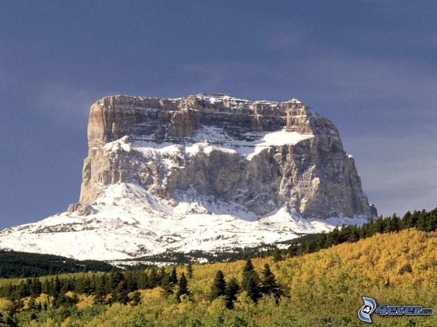 Chief Mountain, Montana, USA, montañas en forma de mesa, bosque