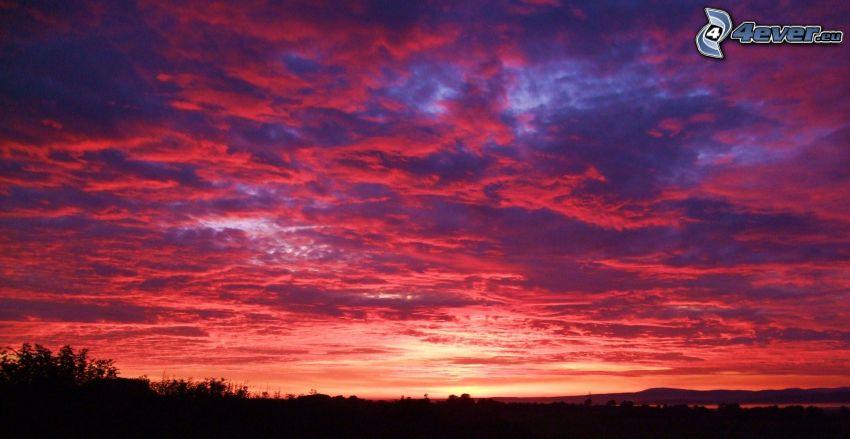 cielo púrpura, horizonte