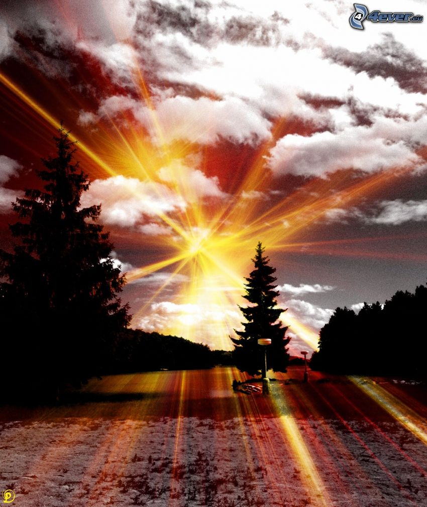 Duchonka, presa, luz intensa