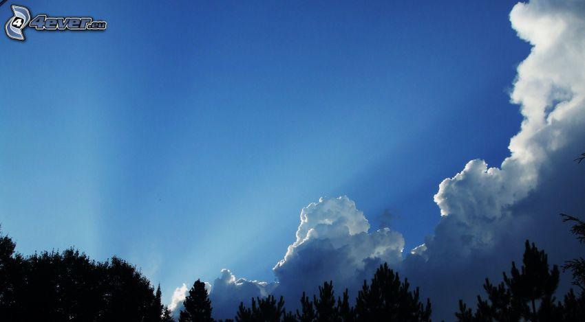 nubes, rayos de sol, cielo azul, silueta de un bosque