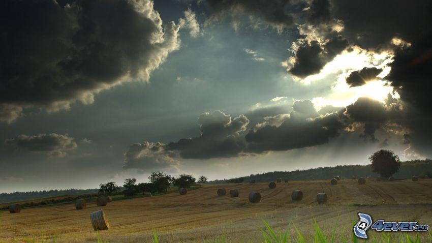 nubes, sol, campo, heno después de la cosecha
