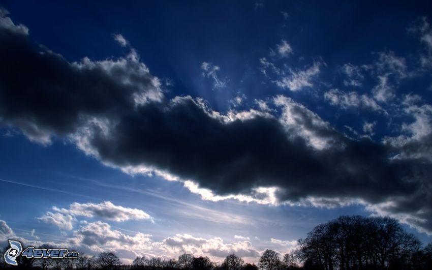 nubes oscuras, cielo, siluetas de los árboles