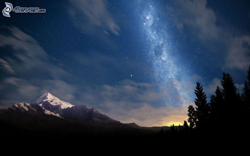 Vía Láctea, siluetas de los árboles, montaña nevada