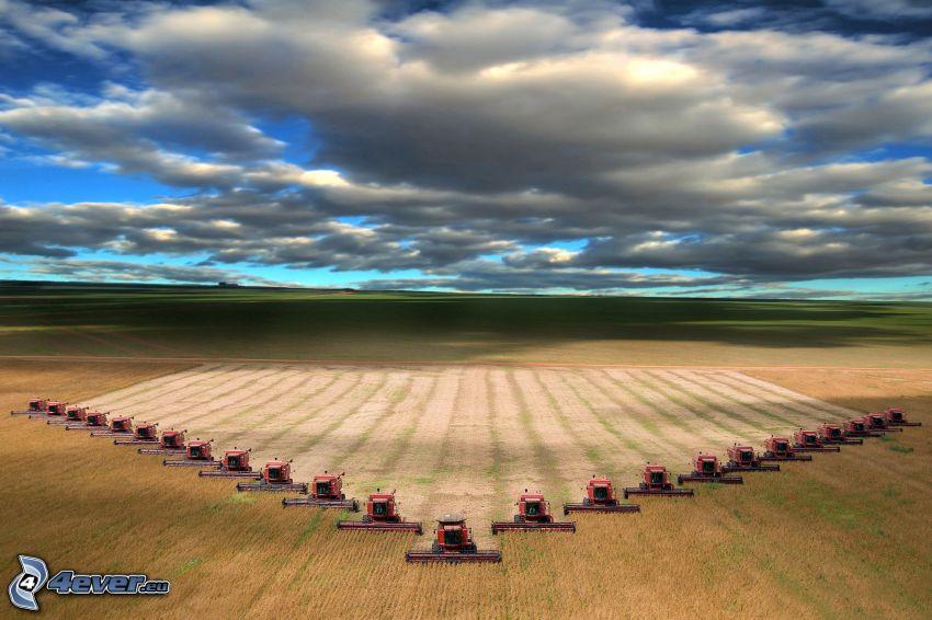 cosecha, campo, cosechador, nubes
