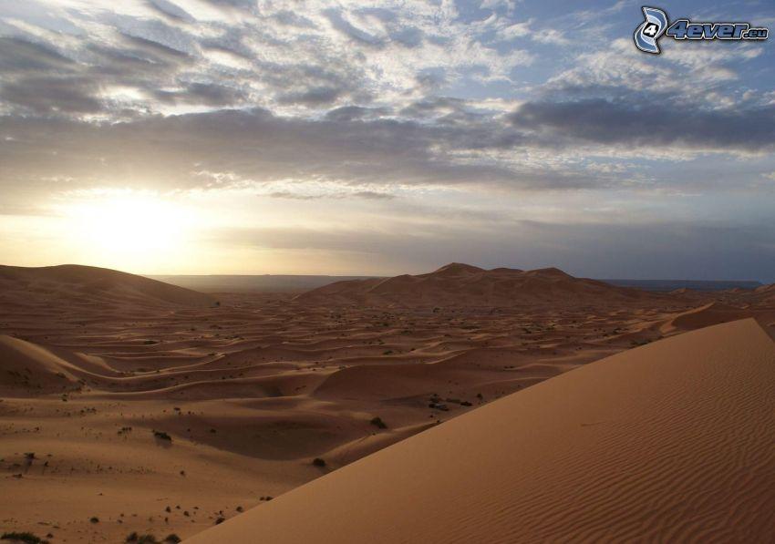 desierto, duna de arena