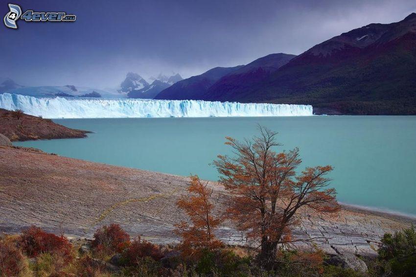 glaciar, árboles otoñales, colina