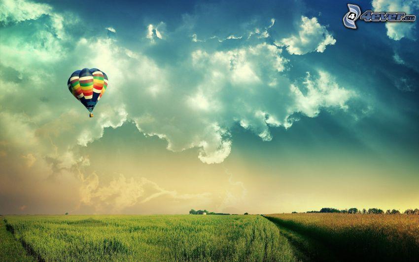 globo, campo, rayos de sol