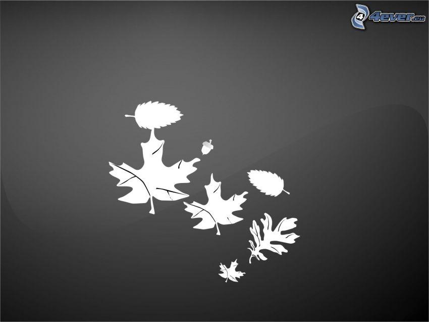 hojas abstractas, bellota