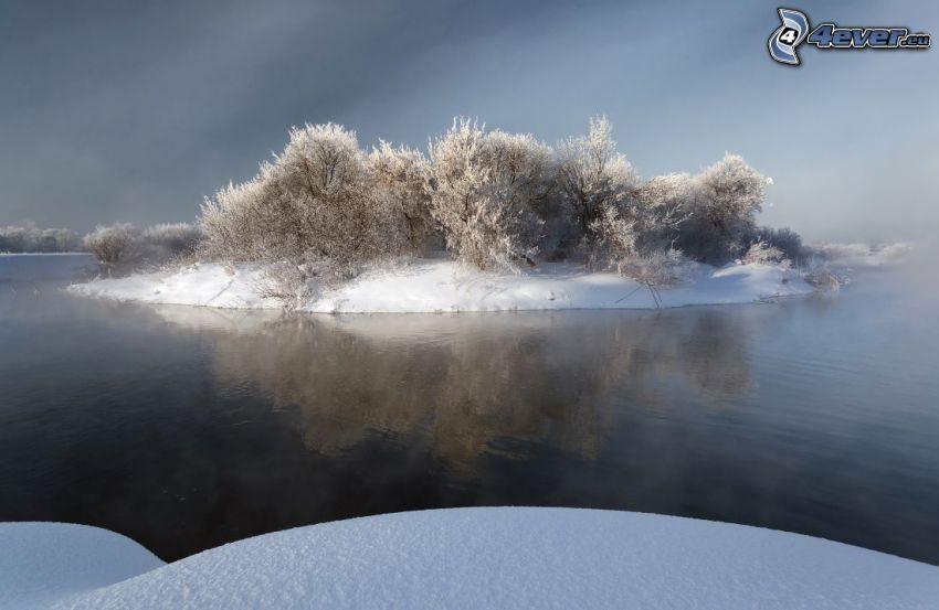 isleta, Arbustos, nieve, lago