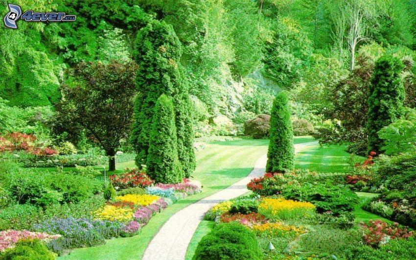 jardín, acera, verde