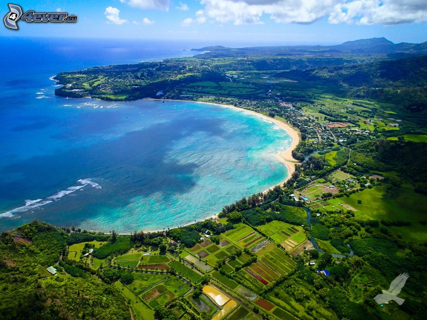 Kauai, Hawai, arroyo, costa, mar, vista aérea