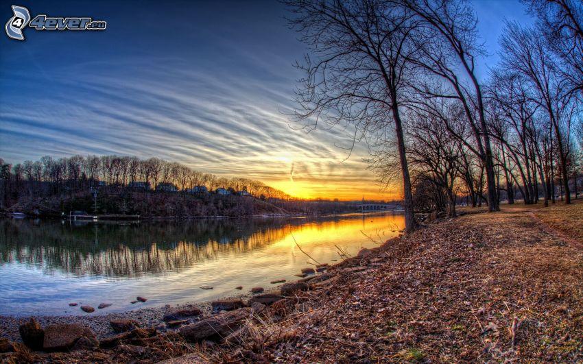 lago, árboles, puesta del sol