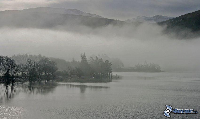 lago, bosque, niebla, sierra, Foto en blanco y negro
