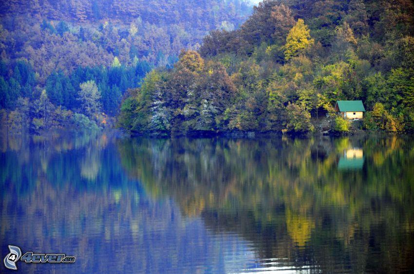 lago, casa, árboles otoñales