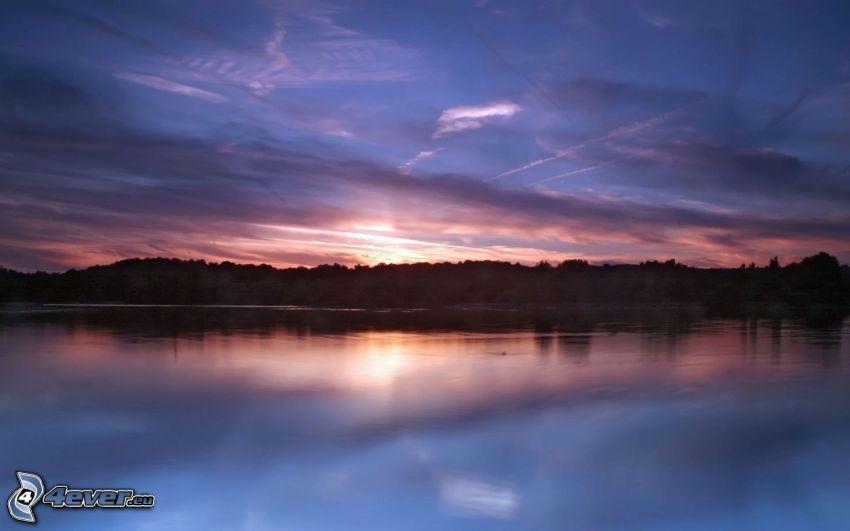 lago, cielo, bosque