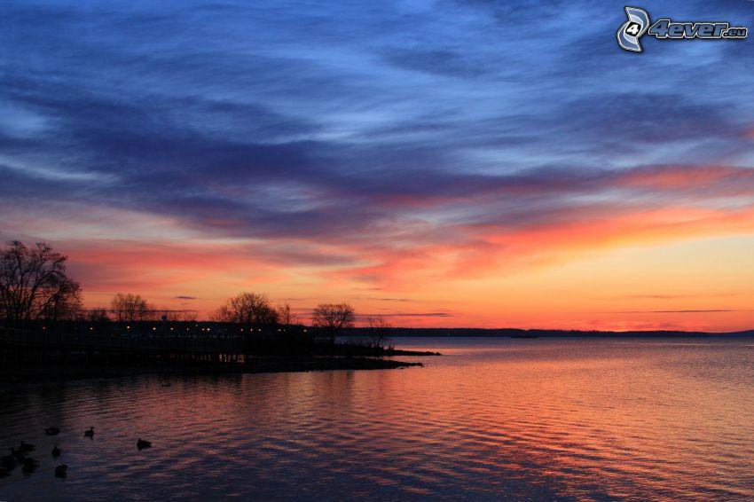 lago, cielo de la tarde, orilla