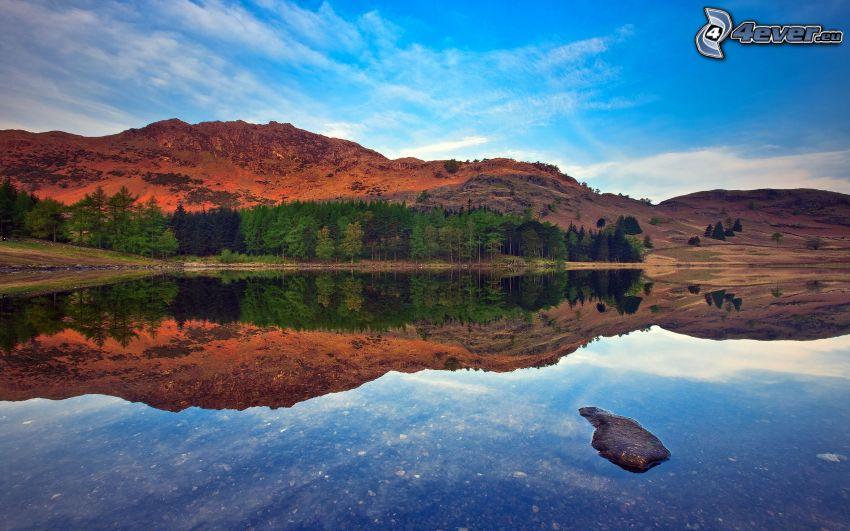 lago, colina, árboles, reflejo