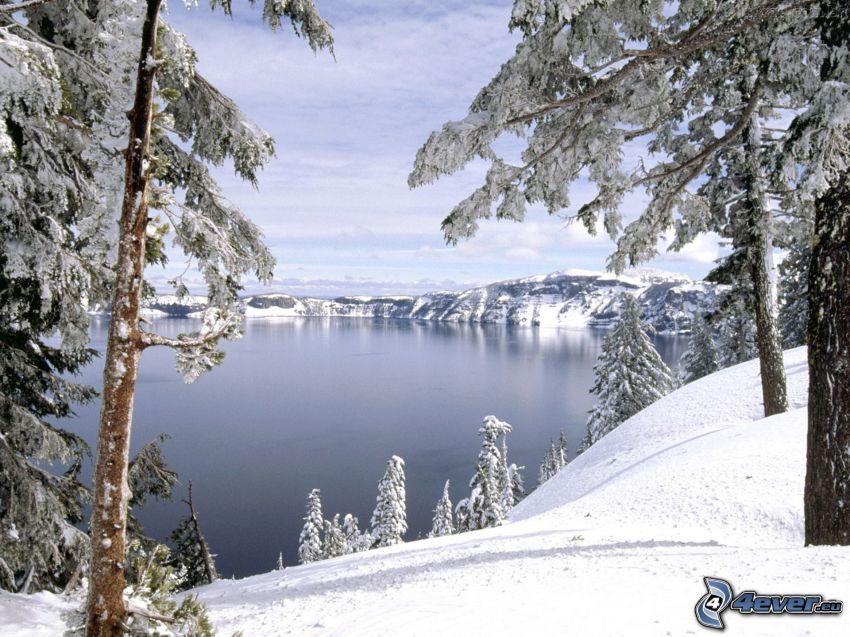 lago, montaña nevada, árboles nevados