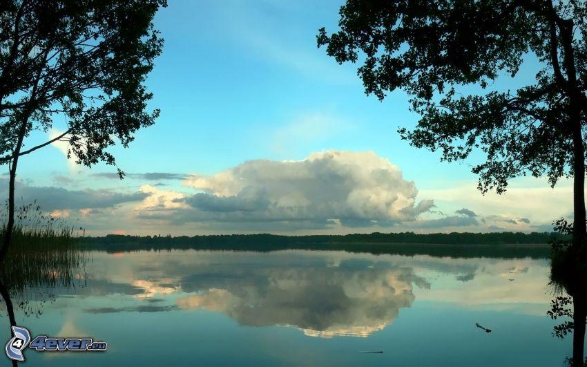 lago, nube, árboles, reflejo