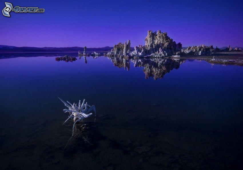 lago, raíces, roca