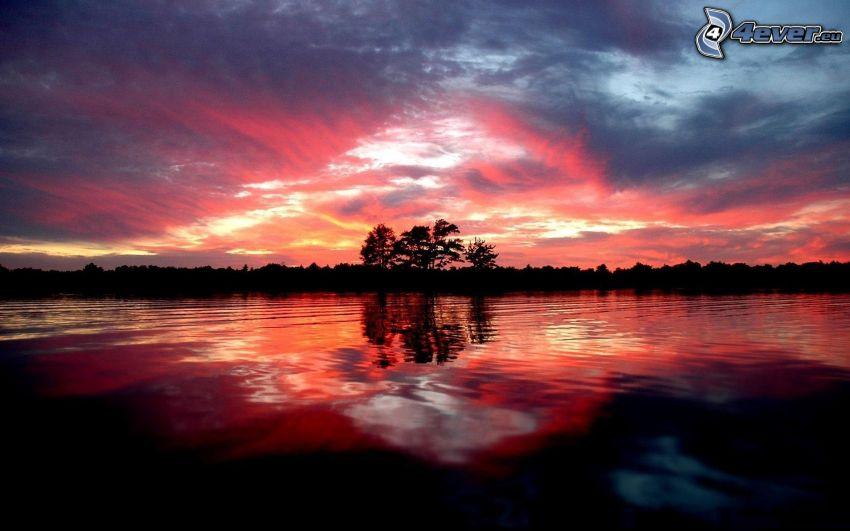 lago, siluetas de los árboles, cielo de la tarde